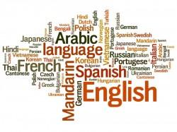 Klausimai vertimų biurui